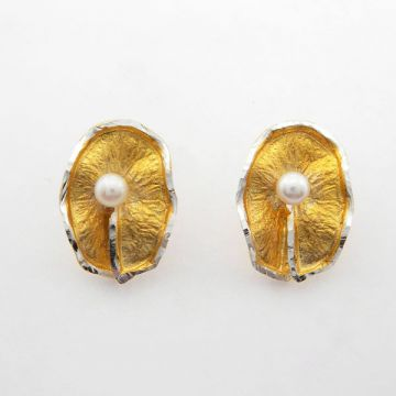 Silver Earrings Gold plated
