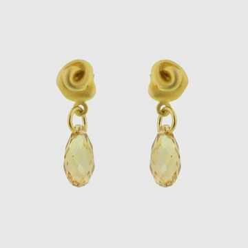 Earrings Silver Gold plated